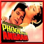 Hum Teri Mohabbat Mein - Phool Aur Angaar - 1993 - (VIDEO+MP3 Format)
