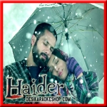 Aao Na - Haider - 2014 - (VIDEO+MP3 Format)